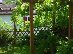 Ferienwohnung Garten 1