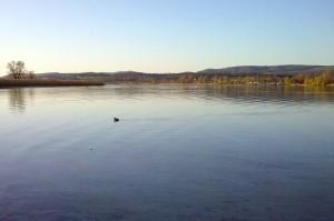 Zeller See bei der Mettnau